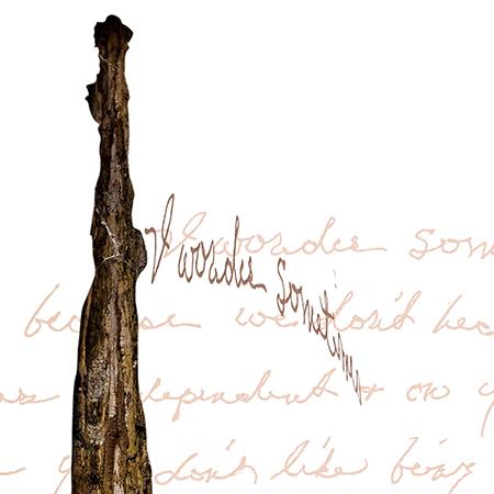 Sketch 4 I.D. #5, detail