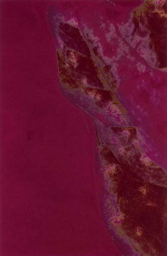 <strong>Barbara Blondeau</strong>[abstract shapes in purple and magenta], 1967Chromogenic color print, polarized, 16 x 24.5 cmVisual Studies Workshop Collection, Estateof Barbara Blondeau1977:0004:0014