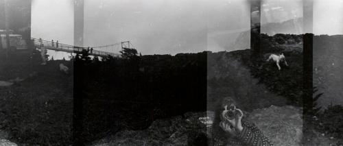 <strong>Robert Fichter</strong>Alice + Dog,1967Gelatin silver print,15.2 x 33.8 cmVisual Studies Workshop Collection,Estate of Alice Wells1988:0012Aperture: 8Camera: NIKON D60Iso: 100Orientation: 1