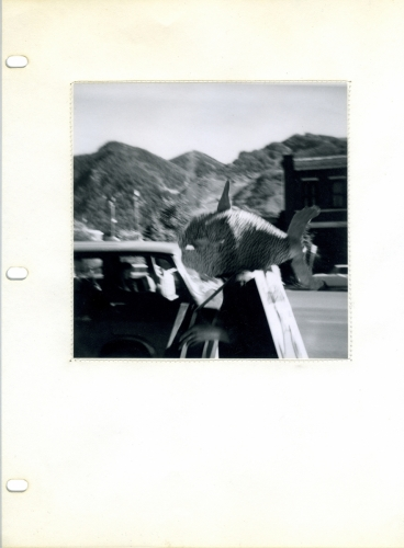 <strong>Bea Nettles</strong> Western July: Summer Instamatics [page 3] Self published, Colorado, 1972 Gelatin silver print stitched into Mylar notebook page, 29 x 25 x 4 cm Number one in an edition of six, signed Visual Studies Workshop Collection,Independent Press Archive Z232.5 .N475 Ne- We