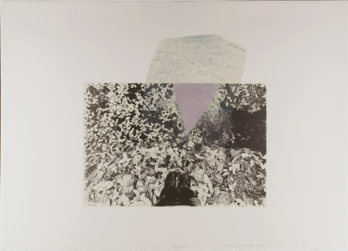 <strong>John Wood</strong>Untitled, A Portfolio of Offset Lithographs [5 of 12],1980Offset photo-lithograph, 45 x 63 cm diameterVisual Studies Workshop Collection,Gift of the artist1975:0103:0005